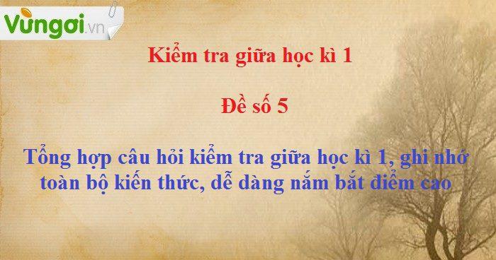 1560133292897_de-giua-ki-1-de-so-5