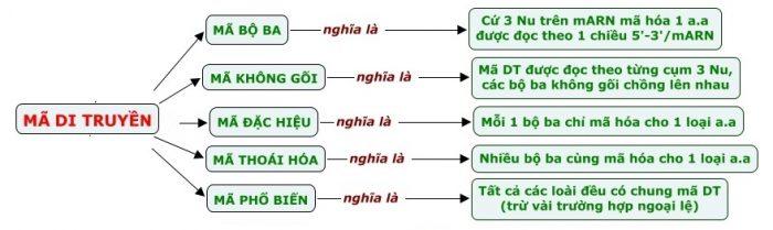 mã di truyền sinh học 12