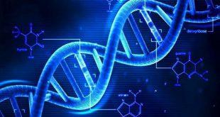 mã di truyền có tính đặc hiệu sinh học 12